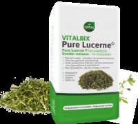 Vitalbix Pure Lucerne+