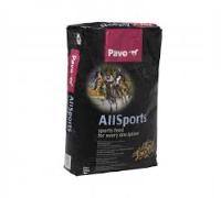 Pavo AllSports